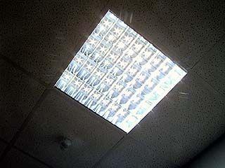 Ртутные энергосберегающие лампы нельзя выкидывать в мусорные баки