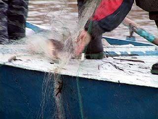 Рыбаки затеяли генеральную уборку на Воронежском водохранилище