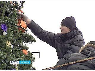 Самую большую новогоднюю городскую елку - разбирают