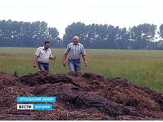 Село Ячейки Эртильского района тонет в отходах животноводческой фермы
