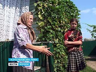 Семья Шиловых из Петропавловского района не пускает своих детей в школу