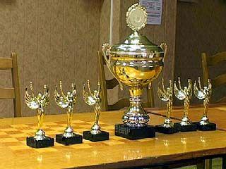 Шахматисты провели молниеносный турнир