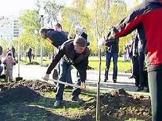 Школьники, студенты и чиновники готовили Воронеж к зиме
