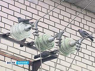 Сильный ветер оставил без света несколько районов Воронежской области