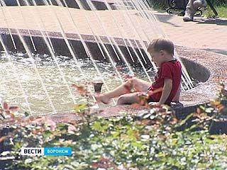 Синоптики предвещают воронежцам жаркое лето