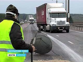 Следом за АЧС - ящур: на санитарных постах Воронежской области усилен контроль