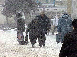 Снегопад, парализовавший Европу, добрался и до ЦФО