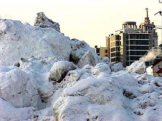 Снегопад прибавил работы воронежским коммунальщикам