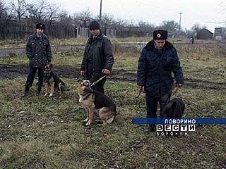 Собаки помогают охране ж/д транспорта наравне с людьми