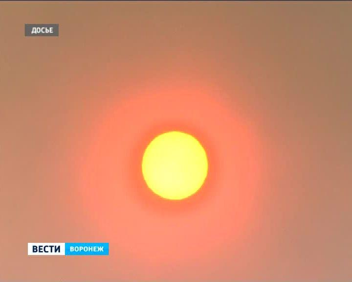 Солнце испытает жителей Воронежа на жароустойчивость