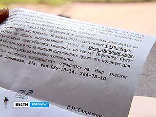 Сотни воронежцев получили повестки в суд в качестве ответчиков