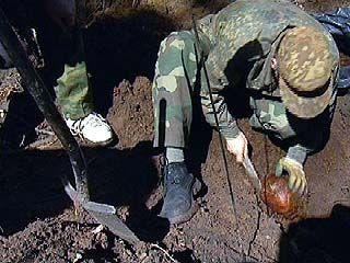 Список погибших за Воронеж пополнился тремя безымянными солдатами
