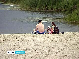 Сразу в нескольких водоёмах Воронежа обнаружены культуры холероподобных вибрионов