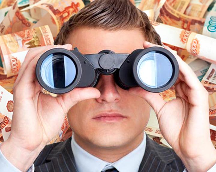 Столичный взгляд на воронежский бюджет