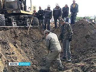 Строители и поисковики объединились - вместе ищут останки бойцов Великой Отечественной