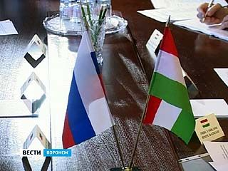 Студенты и преподаватели ВГАУ отправятся в рамках обмена в Венгрию