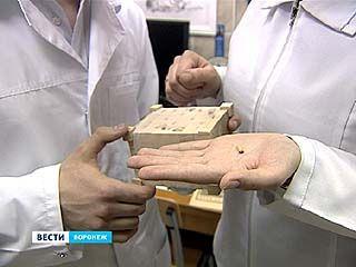 """Студенты ВГМА приступили к изучению """"жуков-астронавтов"""""""