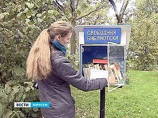 """""""Свободная библиотека"""": книги на прокат прямо в парках Воронежа"""