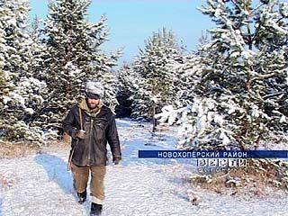 Телермановский лес станет охраняемой государством территорией