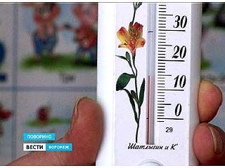Температура в одном из поворинских детсадов не поднимается выше 15 градусов