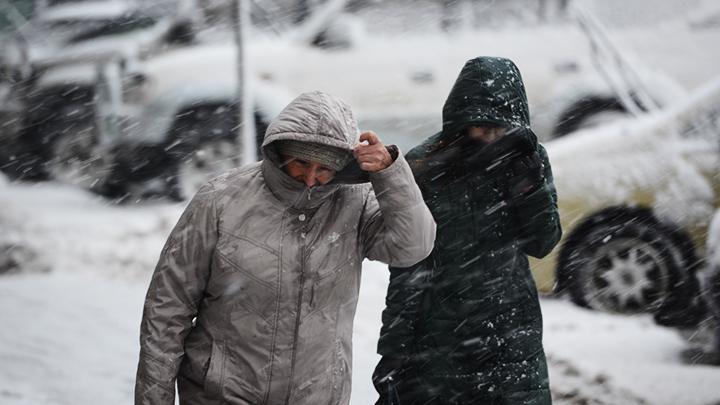 Спасатели: В Воронежской области вновь ожидается опасное усиление ветра