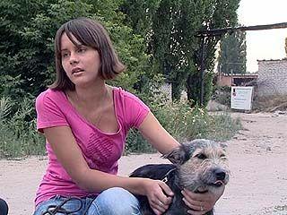 """Центр временного содержания животных """"Друзья"""" - единственный в Черноземье"""