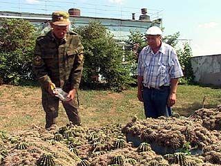 У командира россошанской пожарной части необычное хобби