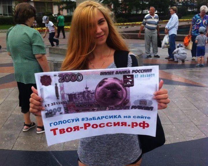 У «Котёнка с улицы Лизюкова» появился конкурент из Барнаула в битве за новые купюры