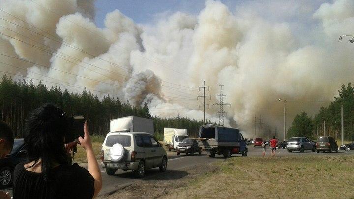 В Лисках при пожаре рядом с больницей выгорело 20 га лесной подстилки