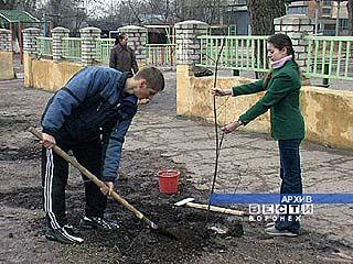 """Учащиеся проведут операцию """"Зеленый обелиск"""""""