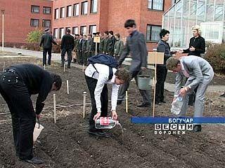 Учащиеся трёх школ Богучарского района устроили экологические соревнования
