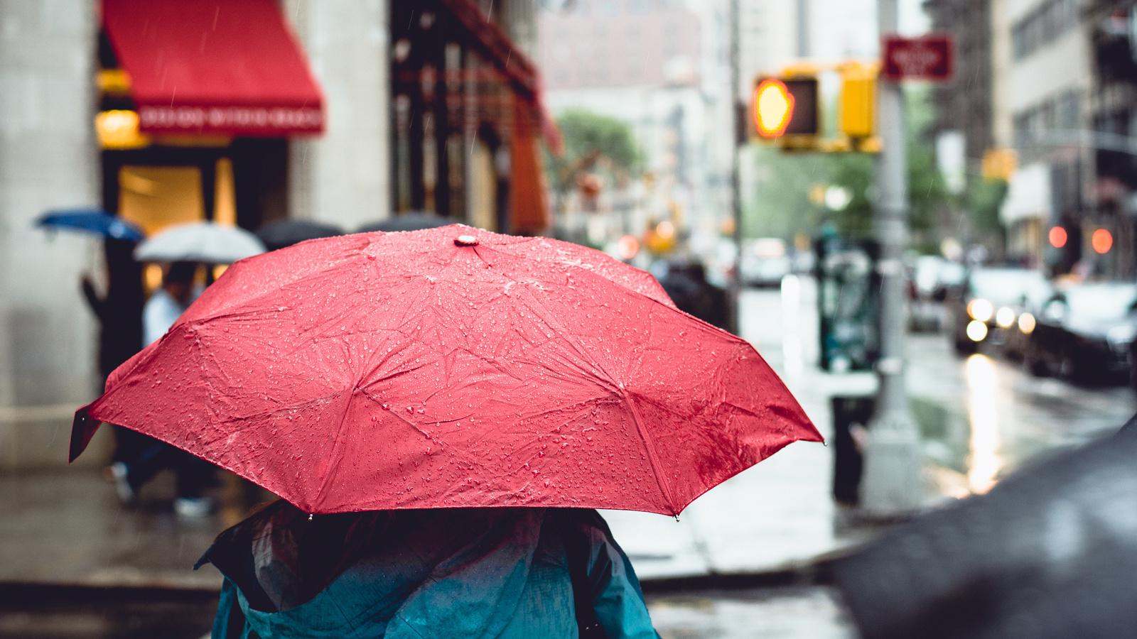 Воронежские синоптики рассказали, сохранится ли пасмурная и дождливая погода в выходные
