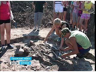 Уникальные захоронения обнаружили в Таловском районе