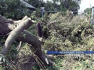 Ураган нанес серьезный ущерб