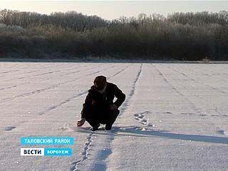 Урожай зерновых 2014 в Воронежской области обещает быть хорошим