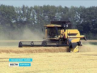 Уже два миллиона тонн зерна собрали аграрии на воронежских полях