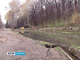 """Уже в этом году может начаться реконструкция заброшенного парка """"Динамо"""""""