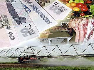В 2009 году объем кредитных ресурсов в АПК области вырос на четверть