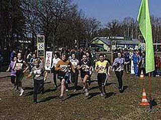 В Анне прошли отборочные соревнования областной спартакиады