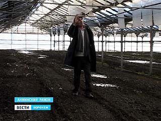 В Аннинском районе восстанавливают хозяйство, разрушенное ураганом