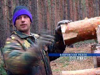 В Бобровском районе выявлен факт самовольной вырубки леса