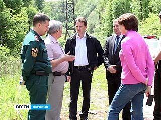 В большинстве лесов Воронежа субботник так и не провели
