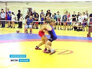 В Борисоглебске проходит турнир памяти Митрофана Неделина по греко-римской борьбе