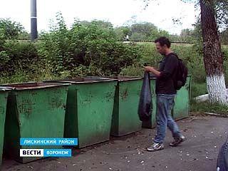 В Дивногорье с начала лета мусор прилежно убирает десант из Евросоюза