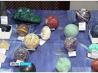 В Доме архитектора открылась выставка камней