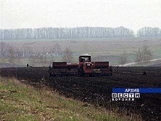 В хозяйствах Воронежской области готовятся к посевной