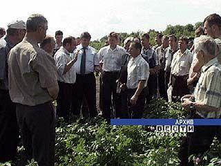 В Институте агробизнеса прошло собрание картофелеводов