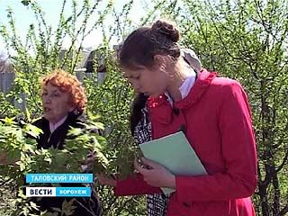 В Институте Докучаева составляют список агрессивных растений