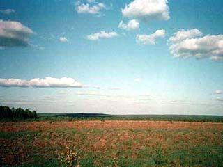 В Калачеевском районе установлен размер ренты за землю
