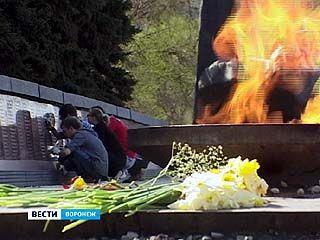 В канун 9 мая воронежские студенты привели в порядок Памятник Славы
